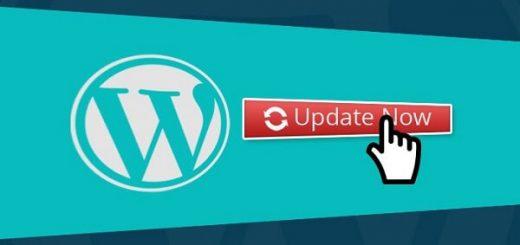 Bật chức năng cập nhật tự động wordpress
