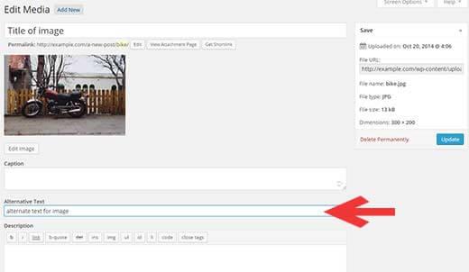 Alt và Title trong seo của thẻ ảnh Img HTML