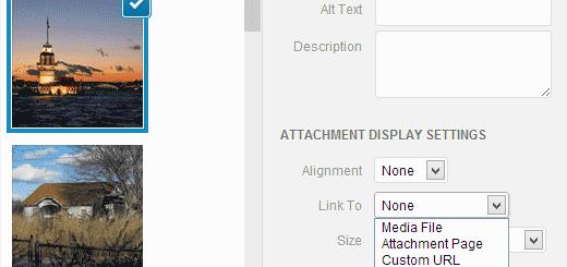 Cách bỏ url mặc định hình ảnh wordpress