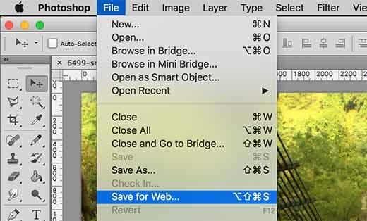Upload hình ảnh mất màu và giảm chất lượng wordpress