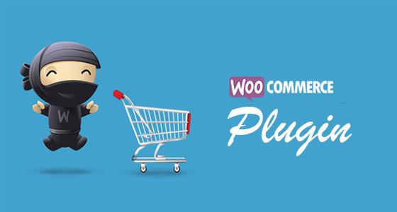 Top 21 plugin wordpress nên có cho website wordpress