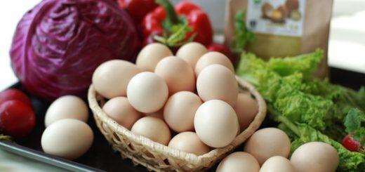Trị mụn đầu đen với trứng gà đơn giản tại nhà