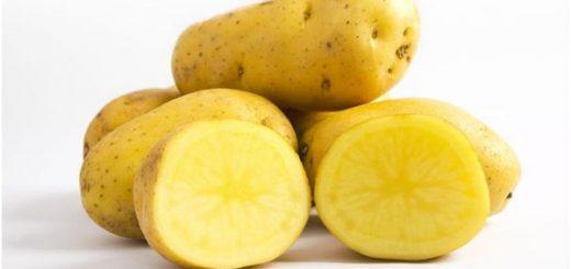 4 bước trị mụn cơm hiệu quả với khoai tây