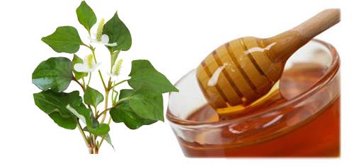 Sử dụng rau diếp cá trị mụn hiệu quả