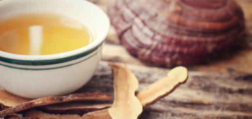 Sau khi hóa trị K vú về tôi có thể uống nước linh chi, uống mật ong trộn tam thất được không?