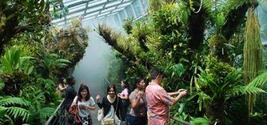 Hướng dẫn du lịch Singapore an toàn