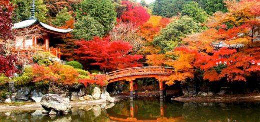 Cách đi du lịch Nhật Bản giá rẻ