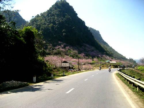 """Hướng dẫn du lịch """"bụi"""" Mộc Châu"""