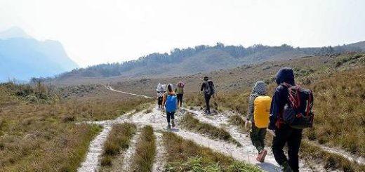 Kinh nghiệm du lịch Tà Năng – Phan Dũng của dân bản địa