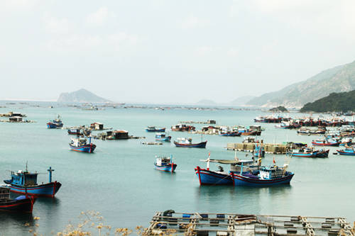 Hướng dẫn du lịch Phú Yên cho người mới