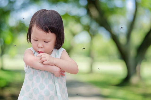 Sử dụng tinh dầu, lăn chống muỗi, kem chống muỗi có hại cho trẻ?