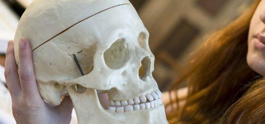 Phân biệt ghép sọ tự thân và ghép sọ nhân tạo?